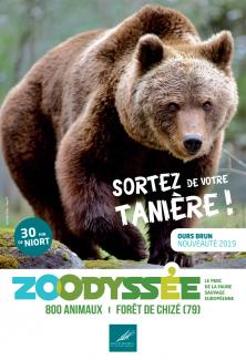 Affiche zoodyssee ours juillet 2019